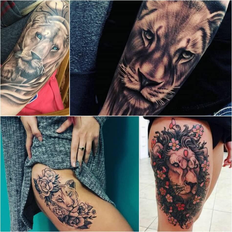 Тату лев - Тату Лев для Девушек - Женские Татуировки со Львом