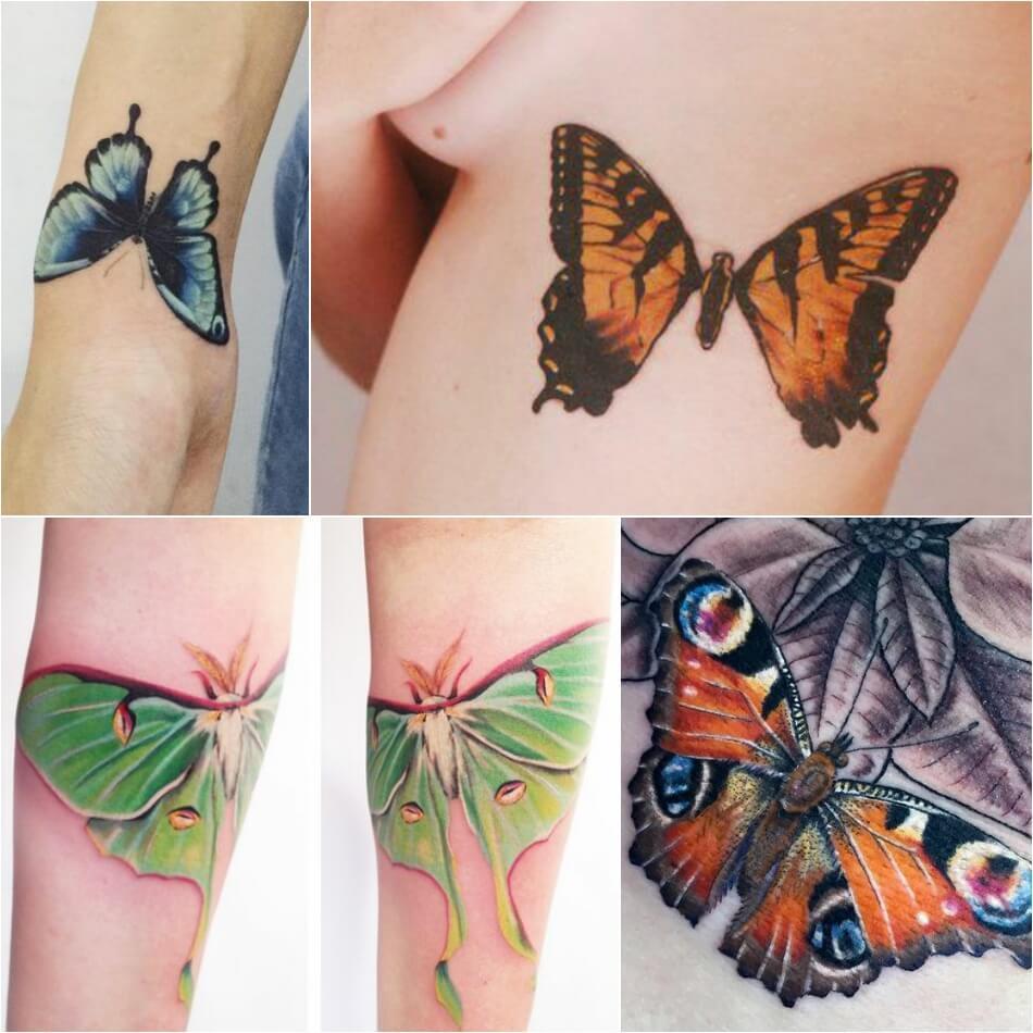Тату бабочка - Реалистичный рисунок бабочки - Тату бабочка реализм