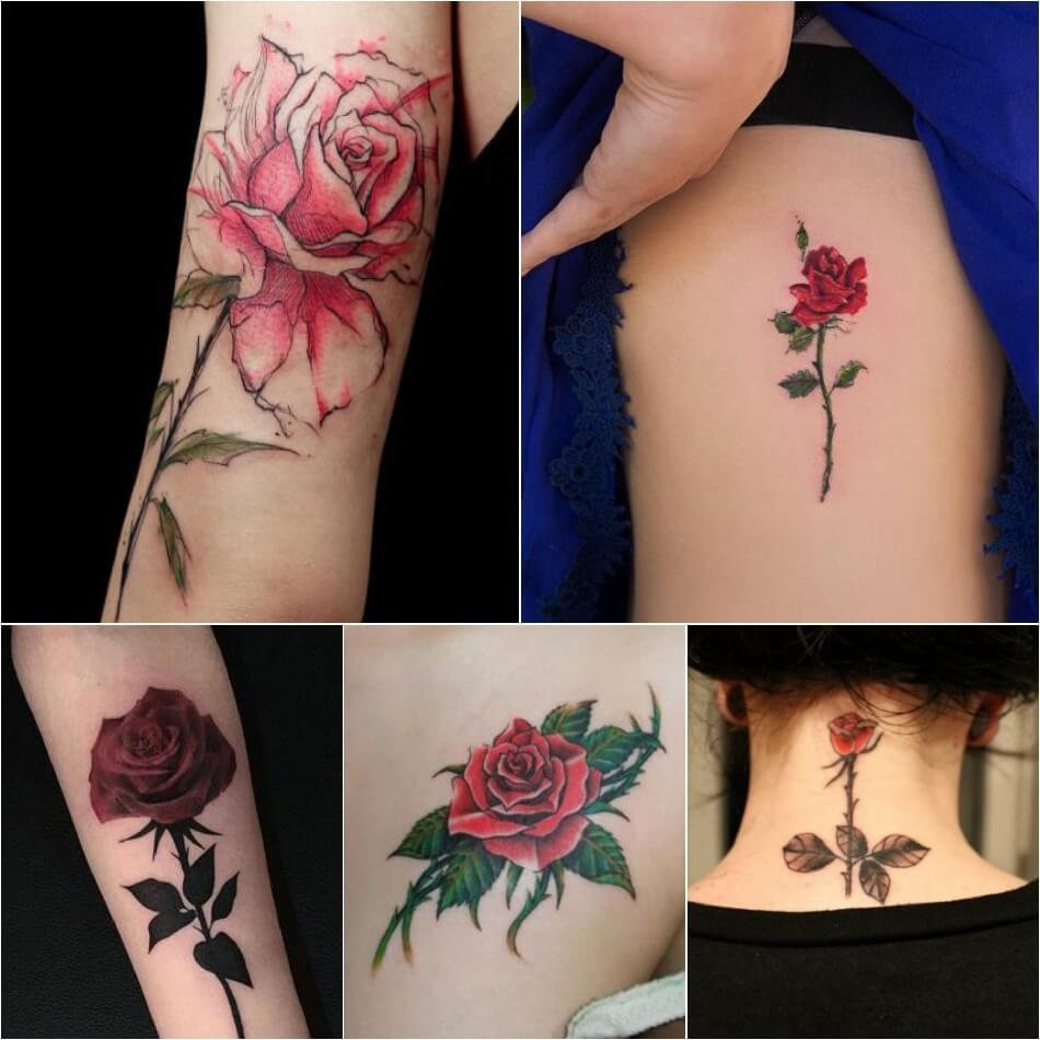 Тату роза - Тату роза значение - Тату роза с шипами - Тату роза с шипами значение