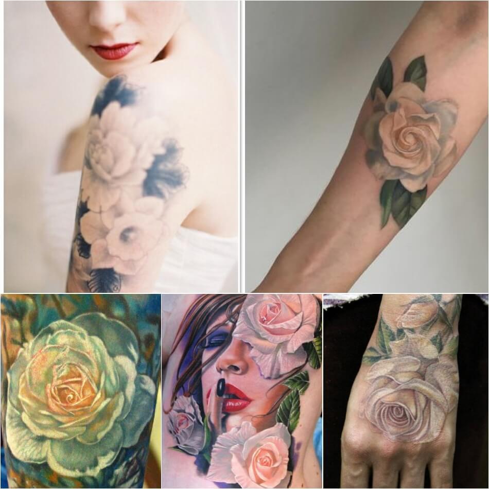 Тату роза - Тату роза значение цвета - Тату белая роза