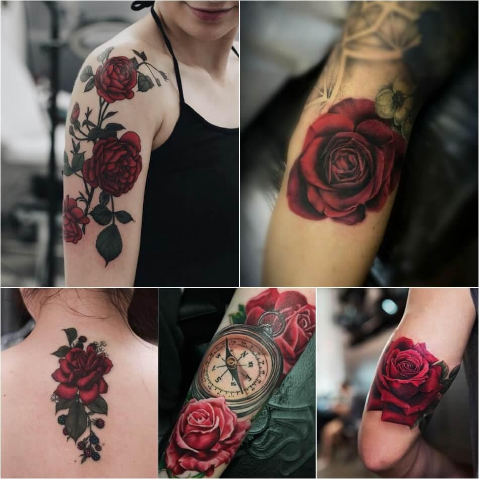 Тату роза - Тату роза значение цвета - Тату красная роза