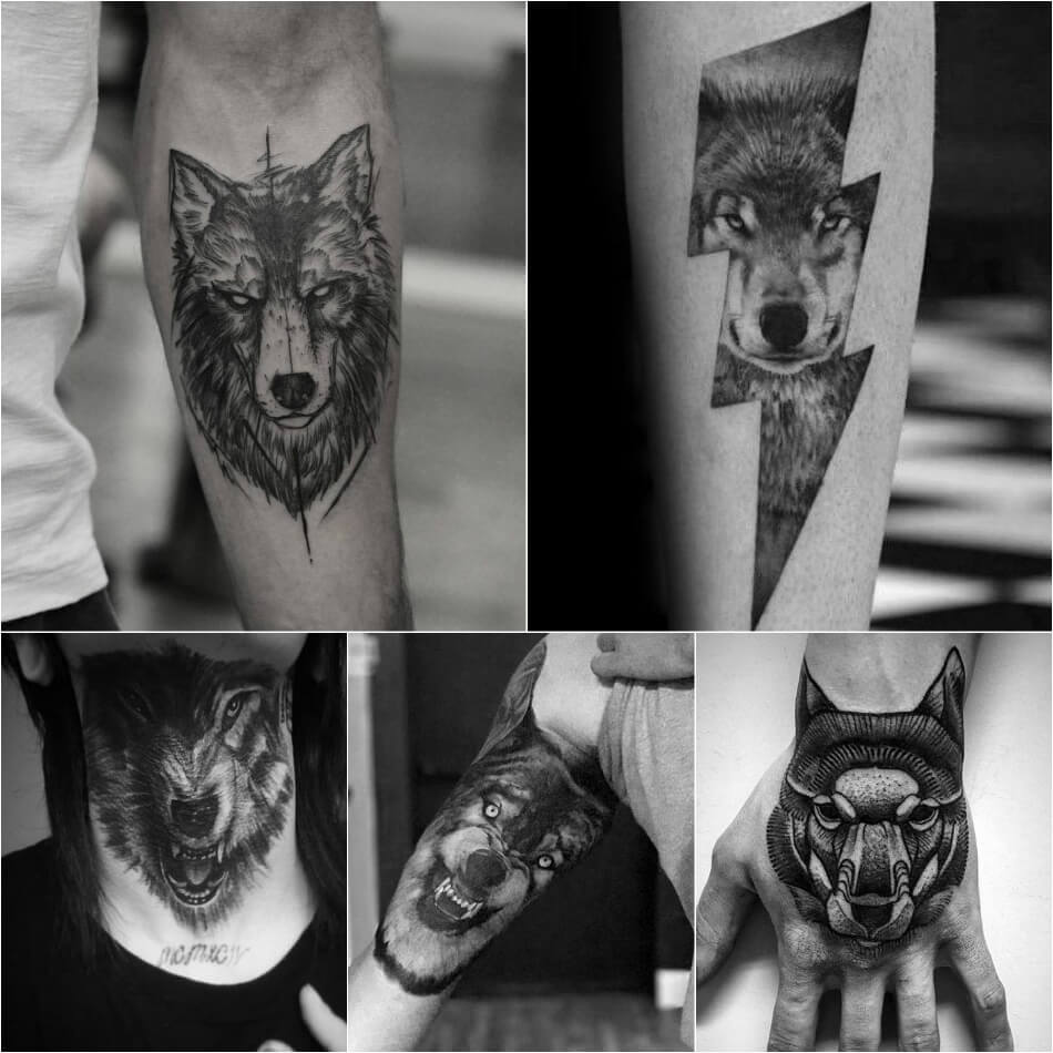 Тату волк - Тату волк для мужчин - Тату волка мужские - Тату волка значение и эскизы