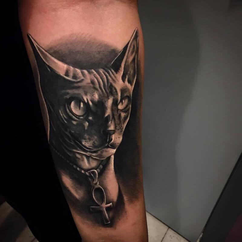 Тату кот - Тату кот черно-белое - Татуировка кошка - Тату сфинкс