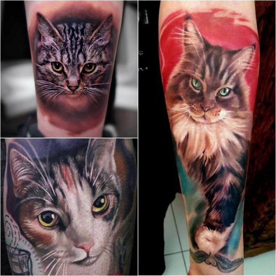 Тату кот - Тату кот мужские - Тату кот для мужчин - Татуировка кот