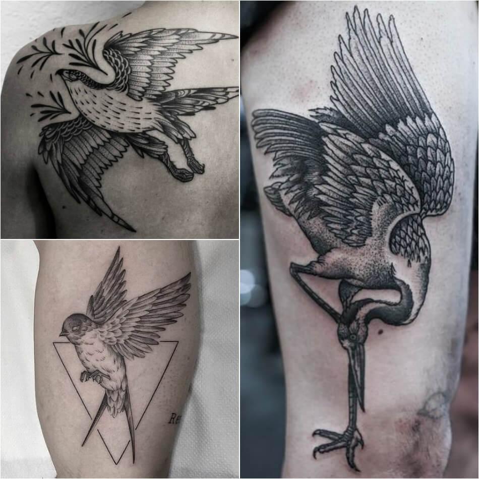 Тату птицы - Мужские тату птицы - Тату птицы для мужчин