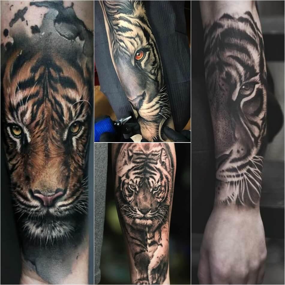 Тату тигр - Тату тигр на предплечье - татуировка на предплечье тигр
