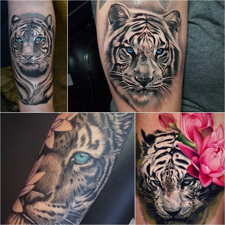 Тату тигр - тату белый тигр - татуировка белый тигр