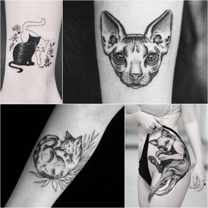 тату с животными - Tatu-kot-Tatu-kot-geometriya-Tatuirovka-koshka-geometriya